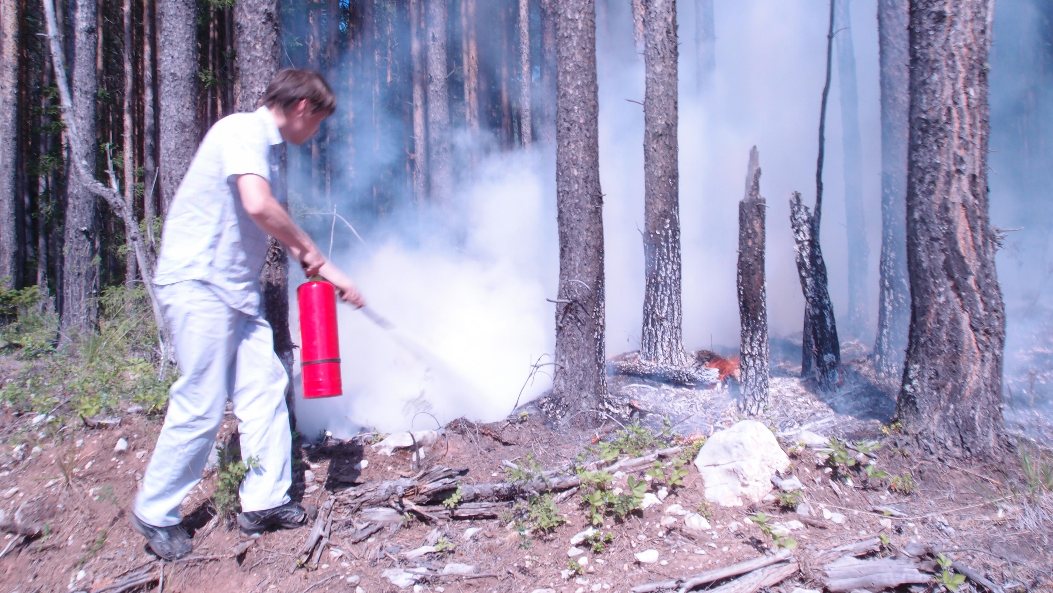 Тушение лесного пожара порошковым огнетушителем